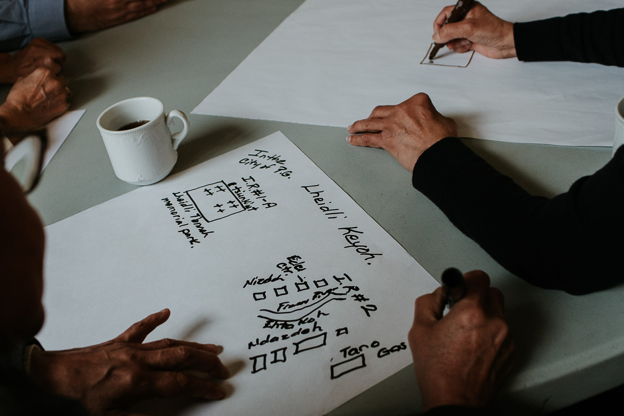 B.C. Language Initiative
